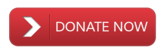 donate ayf